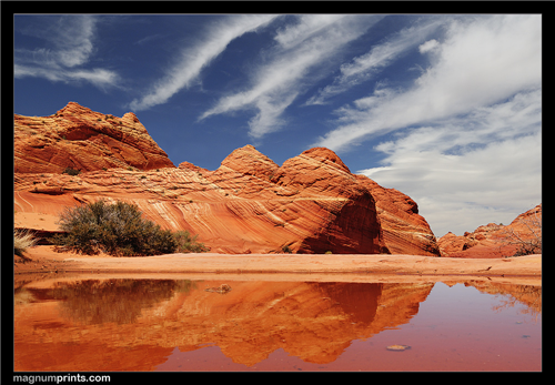 Coyote Buttes Puddle